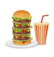 Big hamburger and drink vector image