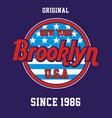 varsity new york city brooklyn vector image