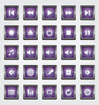 Media Button purple vector image