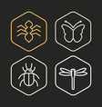 insect icons in line style vector image vector image