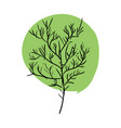 tree doodle isolated green leaves and stem on vector image