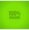 Green Natural Fabric Texture Background vector image