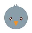 pigeon bird icon vector image