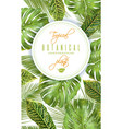 tropical vertical banner vector image