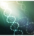 DNA molecule structure on a green background vector image