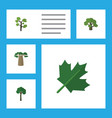 flat icon nature set of garden tree evergreen vector image
