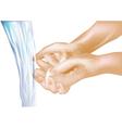 washing hands vector image