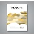 Hexagonal backround business flyer brochure vector image