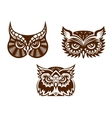 Collection of wise old owl faces vector image