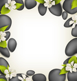 Spa stones with cherry white flowers like frame on vector image