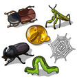 world of insects beetles grasshopper and others vector image