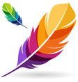 Colorful Feather vector image vector image