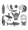Set of surfing vintage design elements Surf logo  vector image