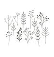 Doodle grass set vector image