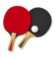 two rackets for playing table tennis on white vector image