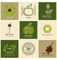 Set of icons organic products vector image