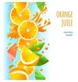 Orange juice border vector image