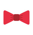 isolated fancy bowtie vector image