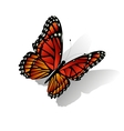 The Monarch butterfly vector image