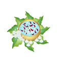 Flower Corolla in Water Bowl for Songkran Festival vector image