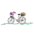 bicycle with flower vector image