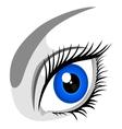 human eye vector image