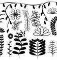 Flowers and leaf elements set vector image