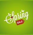 Spring Sale Lettering Design Background vector image