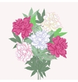 Bouquet with two pink and white peonies vector image vector image