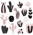 pink cacti vector image