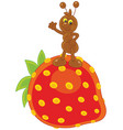 ant and strawberry vector image vector image