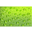 water drops green background vector image
