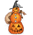 Halloween Pumpkin Scarecrow Cartoon Character vector image