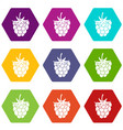 raspberry or blackberry icon set color hexahedron vector image