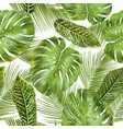 tropical leaves pattern vector image
