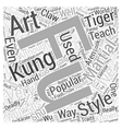 A Look At Kung Fu Word Cloud Concept vector image