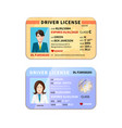different car driver licenses with photo on white vector image