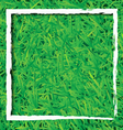 Green grass background with white rectangle design vector image