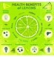 Lemon Health Benefits vector image