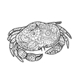 Crab coloring book for adults vector image