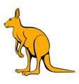 kangaroo icon cartoon vector image