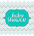 baby shower vintage text on chevron vector image
