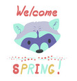 lettering inscription with raccoon vector image