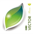 green leaves design vector image