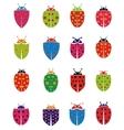 Colorfull Ladybug vector image