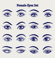 female eyes sketch set vector image