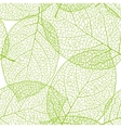 Fresh green leaves background - vector image