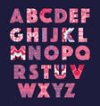 alphabet letters with abstract ethnic pattern vector image