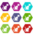 black cat icon set color hexahedron vector image