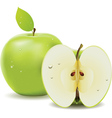 Green apple and half of apple vector image